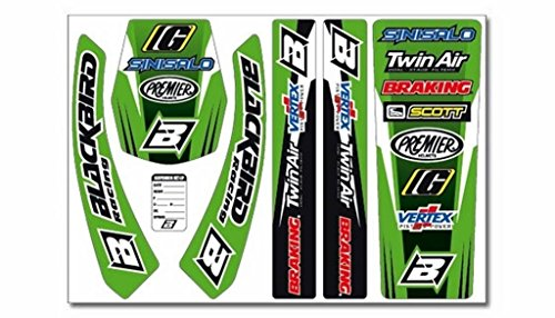 BLACKBIRD RACING - Kit Adhesivos Standard Kawasaki Blackbird Racing 5407 - 39119