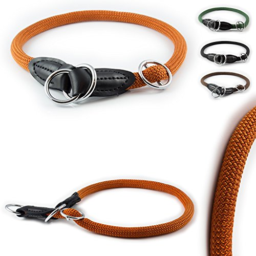 Pear - Tannery CarlCurt - Training Line: Retriever-Hundehalsband Aus Strapazierfähigem Nylon, S 49-51cm, Terra