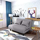 Gbayxj Convertible Sofa Bed Sleeper Chair Bed Fold Up & Down Daybed Couch for Double,Folding Mattress, Leisure Recliner Armchair for Home Office (Gray)