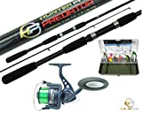 Bass Rod And Reels Review and Comparison