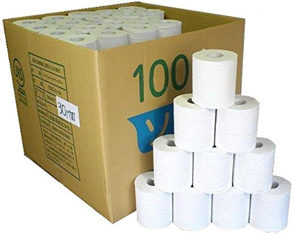 アルバニーキウイ赤字業務用 ダブル トイレットペーパー 無包装 30m 100個入り