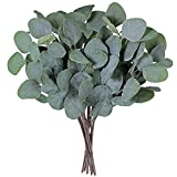 Supla 10 Pcs Fake Eucalyptus Leaves Stems Bulk Artificial Silver Dollar Eucalyptus Leaves Plant in Grey Green 11.8' Tall Wedding Greenery Artificial Greenery Holiday Greens Floral Arrangement