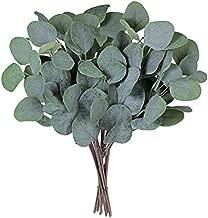 Supla 10 Pcs Fake Eucalyptus Leaves Stems Bulk Artificial Silver Dollar Eucalyptus Leaves Plant in Grey Green 11.8