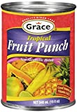 TROPICAL FRUIT PUNCH DRINK 19 OZ (1 CAN)