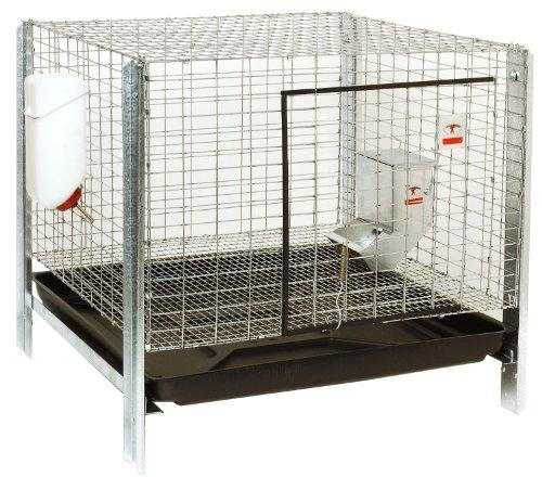 Little Giant Farm & Ag Miller Manufacturing RHCK1 Complete Rabbit Hutch Kit