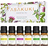 Complete Essential Oils Pack – The ASAKUKI aromatherapy essential oils are made with all-natural plant extracts that are safe and effective on your hair and skin, and come in lavender, lemongrass, eucalyptus, tea tree, sweet orange and peppermint. Re...