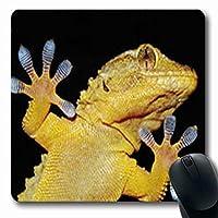マウスパッドおもしろいヤモリトカゲ楽しい接着指野生生物科学の詳細長方形の形状7.9 X 9.5インチ長方形のゲーミングマウスパッド滑り止めラバーマット
