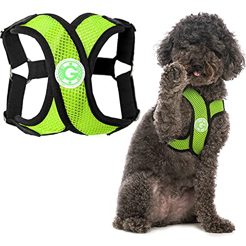 Gooby Comfort X Step in Harness - Green, Small -...