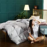 Almondcy bettdecke Kissen,Neue Baumwolle Bettdecke warme Bettwäsche Quilt Quilt Kern Frühling und Herbst Quilt-F_150 * 200 cm 3000 g