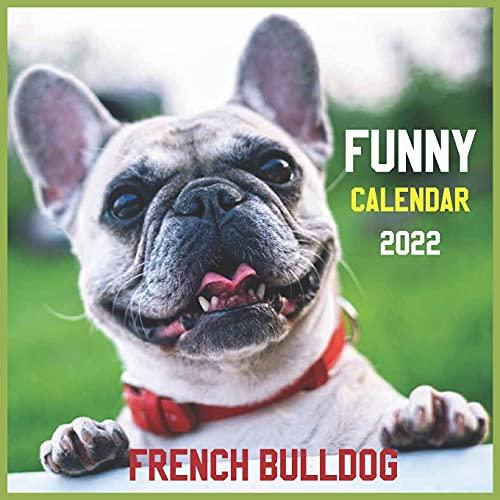 Funny French bulldog Calendar 2022: official Dogs calendar 2022, 12 months, Wild Animals , Cute Dogs, Square 2022 Calendar ,Pets calendar 2022