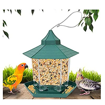 SO-buts Bird Feeder-Hanging Feeding Station Squirrel Proof for Garden Yard Decoration Hexagon Shaped With Roof Hanging Lantern Wild Bird Seed Nut Feeder (Green) by SO-buts pet toys
