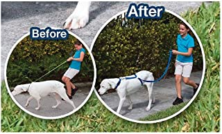 Instant Trainer The Dog Leash