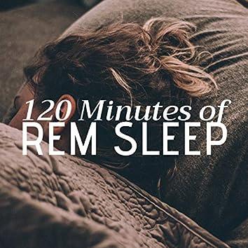 120 Minutes of REM Sleep