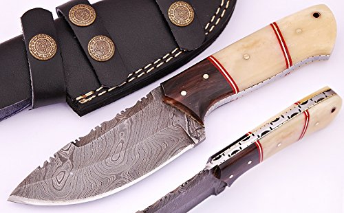 SharpWorld Beautiful Damascus Knife Made of Remarkable Damascus Steel and Exotic Handle -Best Hunting Knife with Sheath TJ102 (Camel Bone & Horn)
