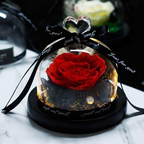 DKFS Moederdaggeschenk Beauty and Beast Rose Romantisch Valentijnsdaggeschenk eeuwig exclusieve glazen koepel rozen verjaardagscadeau 10