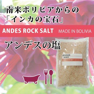 アンデス岩塩(紅塩)1kg