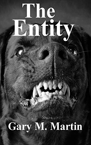 Book: The entity by Gary M. Martin