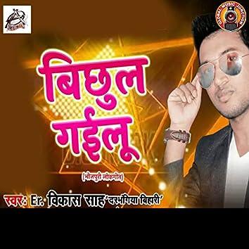 Bichhul Gailu - Single