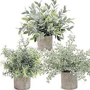 C APPOK Artificial Potted Plants Mini Fake Eucalyptus Plant, Small Plastic Green Plant with Pot, Faux Leaf Rosemary Plants for Shelf, Home Decor, Indoor, Table Decoration – 3 Pack, Flocking Green