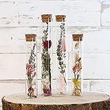 Getrocknete Blumen in Reagenzgläsern mit Korkendeckel, Glasröhren mit Trockenblumen deko, 4 Stück, Geschenkset, trockenblumen Set im Glas, Geschenke für Frauen, ewige Blume deko