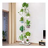 Multi Tiered Metal Plant Stand - Indoor Corner Tall 8 Tier 9 Pots Potted Multi-Tiered Multiple Layer Iron Narrow Flower Stand Rack (White)