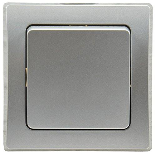 Delphi - Interruptor en cruz (250 V ~/10 A, con marco de 1 vía, adecuado para múltiples marcos, 55 x 55 mm), color plateado y gris