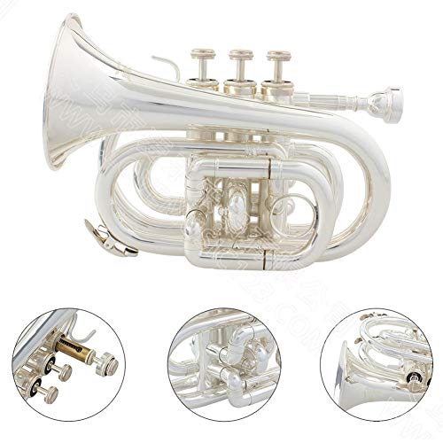 LJRnyi Pocket Trompet Gold Puur Zilver Palm Nummer Blasinstrument Professionele handschoenen, doeken, draagtassen