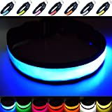 Fun Pets Super Bright USB Rechargeable LED Dog Safety Collar - Great Visibility & Improved Safety - 7 Colours, 5 Sizes (Blue, Small)