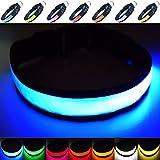 Fun Pets Collare di Sicurezza per Cani con LED Ricaricabile ultraluminoso con Grande visibilità e Maggiore Sicurezza Media (40cm - 50cm / 15.7' - 19.7') Blu
