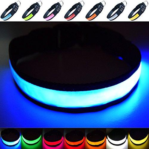Fun Pets Hundesicherheitshalsband mit ultraheller, wiederaufladbarer LED mit hervorragender Sichtbarkeit und erhöhter Sicherheit Klein (30cm - 40cm / 11,8