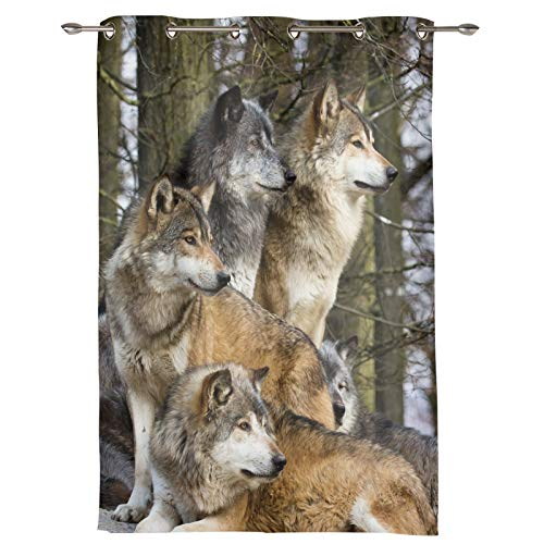 """Verchant Draperies & Curtains Panels for Living Room Wolves Family Forest Wild Animals Durable Window Curtains for Solding Glass Door Bedroom Kitchen Home Decor Shading Drape-1 Panel, 52"""" W by 45"""" L"""