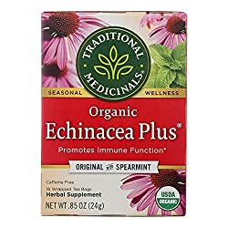 Echinacea tea to fight cold and flu virus