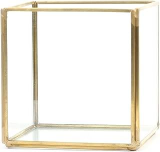 Koyal Wholesale Geometric Terrarium Glass Table Decoration, Planter for Succulents, Cactus, Air Plants, Indoor Plants, Outdoor Plants (4.72-Inch Cube, Gold)