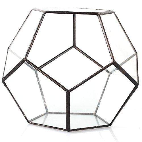 Transparentes fünfeckiges Dodekaeder Glas, Terrarium, auch für Sukkulenten , farblos, Schwarz - 5