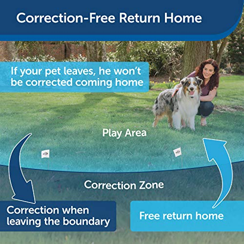 PetSafe Stay & Play Wireless Dog Fence for Stubborn Dogs