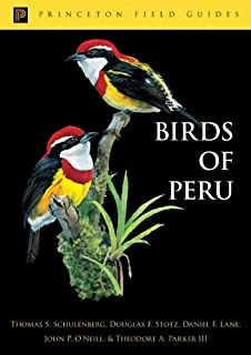 Birds of Peru (Princeton Field Guides)