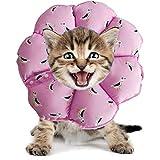 PJDDP Regolabile Collare del Gatto di Recupero Cat Cono Dopo Chirurgia, Elisabettiano Collari Protettivi Cono, Bordo Sfumato Anti-Bite Lick Capo La Guarigione della Ferita per Animali Gatto Cani,4,M
