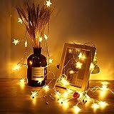 xuuyuu LEDスターライト 40LED クリスマス飾り ホワイトデー/パーティー/結婚式/イベント 飾り付け 雰囲気作り