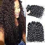 Brazilian Water Wave Virgin Hair 4 Bundles 100% Unprocessed Curly Wave Bundles Wet and Wavy Water Wave Human Hair Extensions 12 14 16 18 Brazilian Virgin Hair Human Hair Weave Bundles