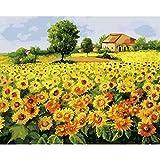 ZXDA Frameless DIY Pintura por número Flor Pintura al óleo Pintada a Mano Dibujo sobre Lienzo decoración del hogar A2 60x75cm