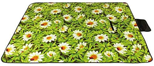 Picknickdecke wasserabw. mit Fotodruck, Auswahl: Größe - 80x120 cm Design - Daisy, Stranddecke Kofferraumunterlage Campingdecke