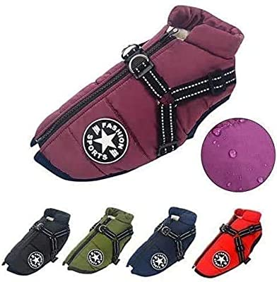 LucaSng Dog Jacket with Harness, Waterproof Warm Dog Winter Coat for Small Medium Large Dogs, Cozy Dog Sport Vest For Labrador Big Dog Chihuahua French Bulldog (L, Purple)