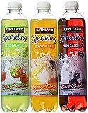 Kirkland Signature Sparkling Water Bottle Variety Pack