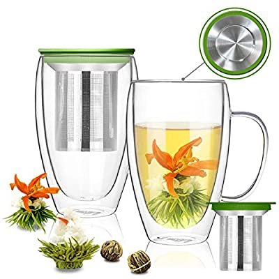 Glass Tea Mugs Gift Set of 2, Double Walled Coffee Mugs Espresso Latte Cup Clear Insulate Smoothie Cups with Lid and Removable Infuser, Free Blooming Tea Balls Included
