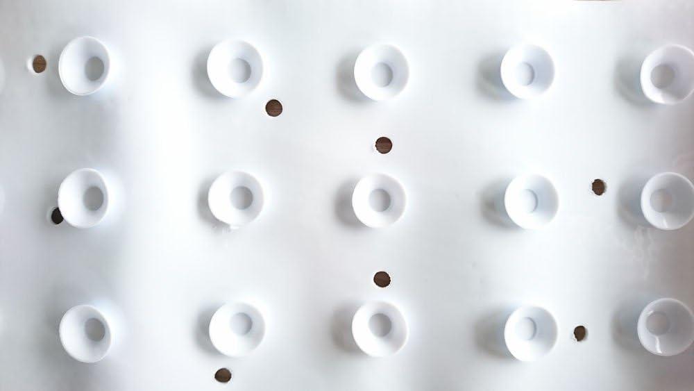 Blue Papillon Non Slip Bath mat-Massage Dolphins Suction cups-65x37 cm 65x37 cm PVC