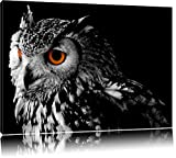 Dark Eule mit orangen AugenFormat: 100x70auf Leinwand, XXL