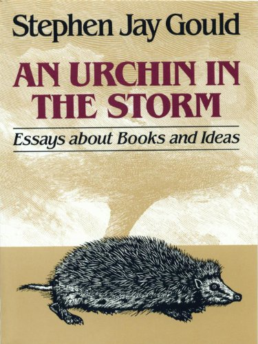 An Urchin in the Storm: Essays about Books and Ideas (English Edition)