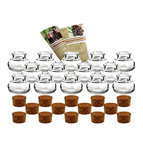 gouveo - 14 piccoli contenitori rotondi in vetro con tappo in sughero'Mini 40', tappi inclusi, per bomboniere, spezie, bicchiere dosatore, contenitori
