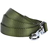 Blueberry Pet Durable Classic Solid Color Dog Lead 150 cm x 1.5cm in Military Green, Small, Basic Nylon Leads for Dogs, Matching Collar & Harness Available Separately