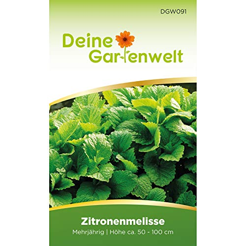 Zitronenmelisse Samen mehrjährig | Saatgut für Melissa officinalis | Kräutersamen